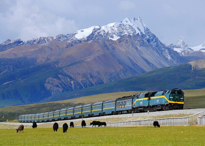 What to see  along Qinghai Tibet Railway