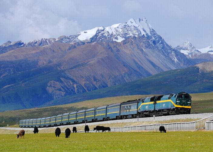 What to see  along Qinghai Tibet Railway
