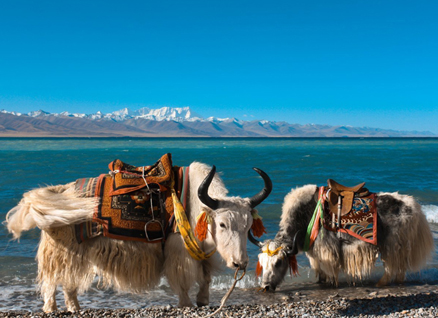 Best time to travel Tibet