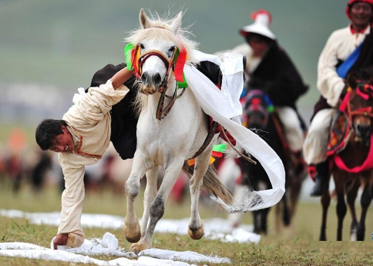 8 Days Nachu Horse Racing Festival Tour